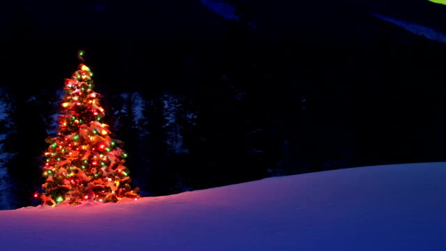 Christmas tree glowing outdoors Under the Northern Lights