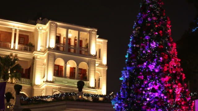 WS Christmas tree in front of building at night / Hong Kong, China