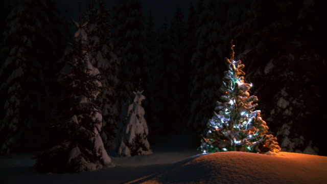 HD LOOP: Christmas Tree