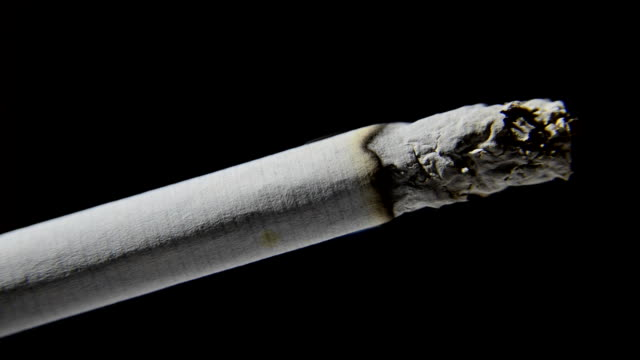 Cigarette Burning Time-lapse