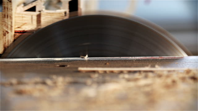 Circular Sawmill