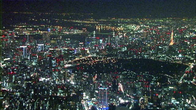 City lights illuminate the Tokyo metropolis at night.
