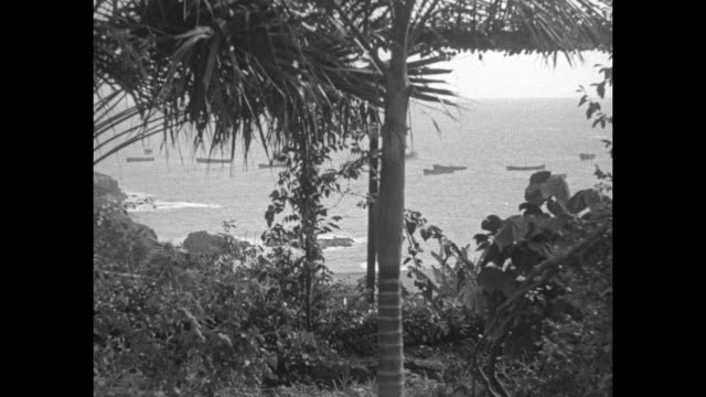 WS city of Funchal / wide shot from land of ships in harbor / two shots of soldiers drilling / Note exact day not known