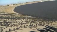 KTLA City officials released 20000 shade balls into the Los Angeles Reservoir Monday the final step in a $345 million water quality protection...