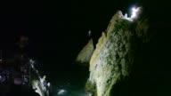 Clavadistas divers of La Quebrada cliffs in Acapulco Guerrero Mexico Wednesday November 18 2015 Acapulco is one of Mexico's best known beach resorts...