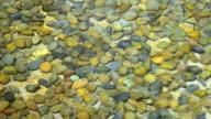 Clean transparent water of pool