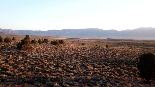 Schakelt u zachte lucht na zonsondergang in Californië Over wildernis
