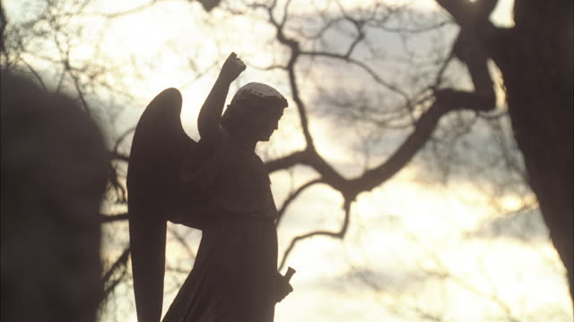close angle of stone figurine or statue of angel, could be on gravestone. graveyard or cemetery. bare branches on trees.