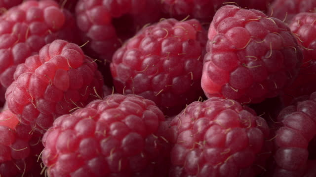 Close shot panning across raspberries.