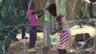 Close to 400 migrants from Mozambique Zimbabwe and Malawi have been living in a camp for internally displaced persons since Friday after they fled...