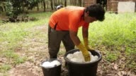 Close up a worker transfers harvested sap into a bucket a rubber plantation in Huay Din Jee Village Bokeo Province Laos on July 30 A worker carries...