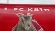Close Up general view of the fan article bus of 1 FC Koeln showing the goat of Koeln prior to the Second Bundesliga match between 1 FC Koeln and 1 FC...