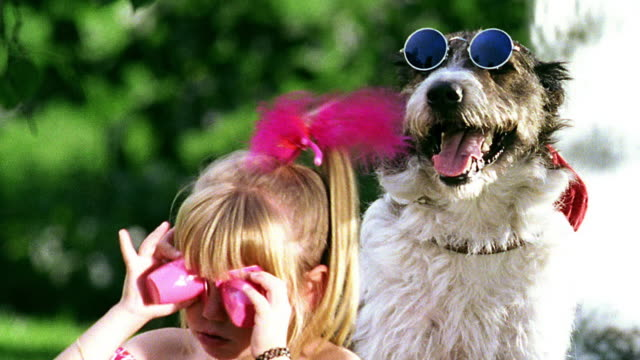 close up girl playing with cups over eyes + sticking tounge / dog with sunglasses + hat next to girl