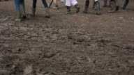 Close up of a muddy footpath at the festival