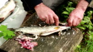 Close up of mans hands cutting out fish gills