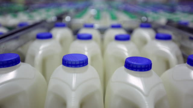 Close up of rows of milk bottles with blue lids and milk bottles with green lids in the background
