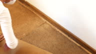 Close up over shoulder as renovator woman pulls back old carpet to reveal parquet wooden floor