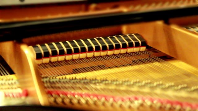Close up shot of the inside of a Classical Piano as it is being played.