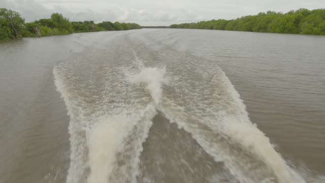 Close up twin Suzuki outboard motors powering tour boat along / wide shot tour boat along placid river seen from behind / close up wake from tour...