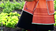 Close up video portrait of Xhosa African businesswoman farmer