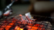 close-up at in front of view: fresh squid on coal fire to make roast squid