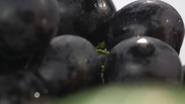 Close-up focus pull between black grapes still on their stalk.