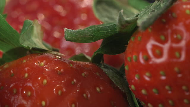 Close-up focus pull between un-hulled strawberries.
