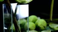 close-up follow: arrange folded lotus in a glass vase