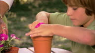 Close-up of a boy planting a flower into a pot.