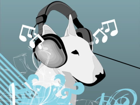 Close-up of a dog wearing headphones and listening to music