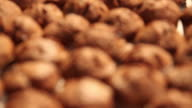 Close-up of baked cookies in bakery