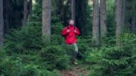 Nahaufnahme der Wanderer macht seinen Weg im Wald
