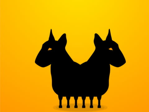 Close-up of two dogs on a yellow background
