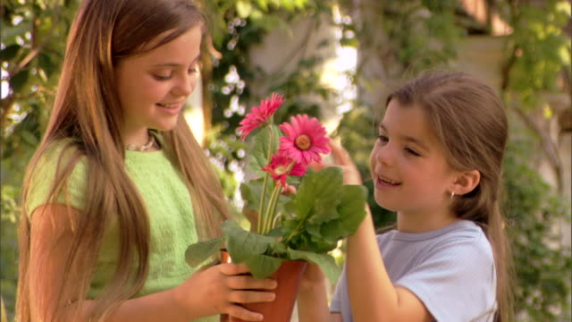 Close-up of two girls looking at a potted gerber daisy.