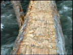 Close-up of wooden log