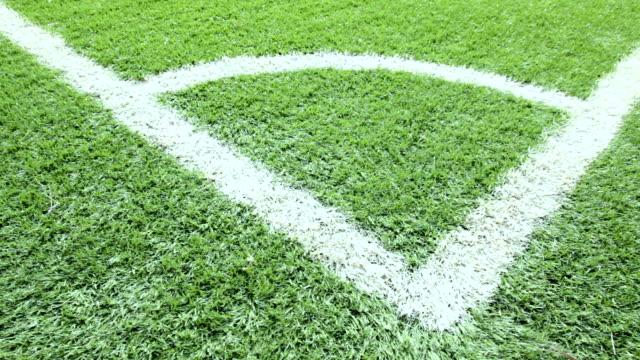 Close-up soccer field.