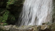 Close-up view of waterfalls from rainforest rocks.