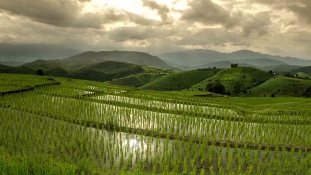 TL: Wolke darüber nachdenken, frisches Wasser in mich Reis Terrasse