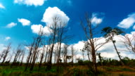 Cloud runs through drought.