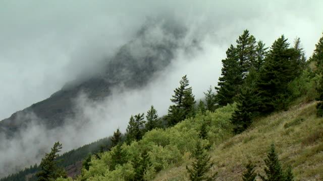 MS Clouds above hillside, Waterton Lakes National Park, Alberta, Canada