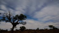 Clouds travel across a savannah in South Africa.