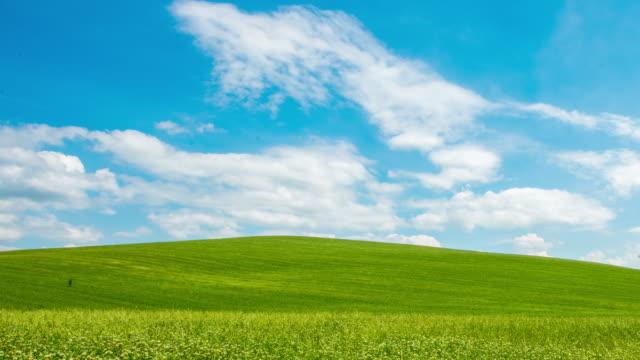 T/L 8K Cloudscape over mooie groene weide