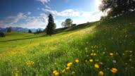 Wolkengebilde mit blühenden Sommer-Wiese in Bayern, Deutschland