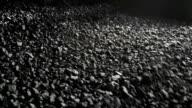 Coal Processing conveyor