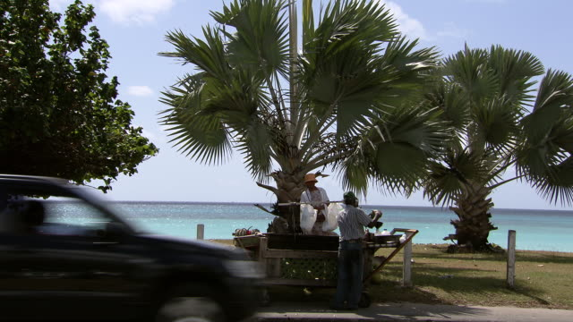 WS Coconut stall / Brightown, Barbados