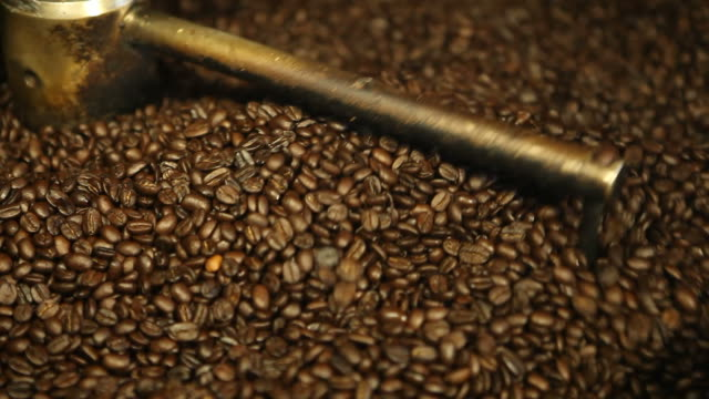 Coffee Beans Cooling in Roaster Tray