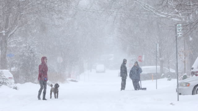 Cold blizzard in a residential area