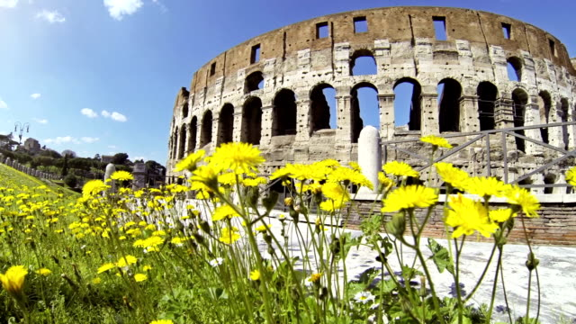 Coliseum at summer in Rome