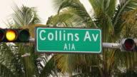 Der Collins Avenue in Miami mit Palmen