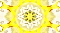 Colorful Flowers Kaleidoscope
